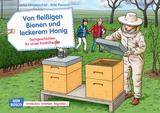 Von fleißigen Bienen und leckerem Honig. Kamishibai Bildkartenset.