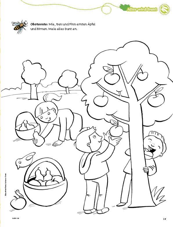 Material Downloads Spatz Das Mit Mach Heft Kinderzeitschrift Spatz Don Bosco Verlag